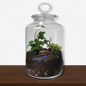 Tall Cookie Jar Terrarium Craftlife